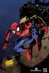 Spiderman Jim Lee colors me