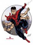 Six arm spiderman