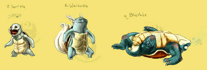 7-9 Turtles