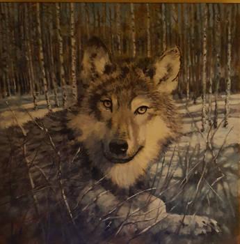 A wolf snow scenewip by johnstevensartist
