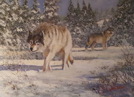 Final Wolves