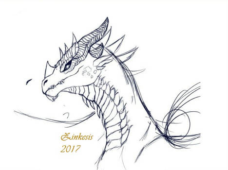 Bronze Dragon Sketch