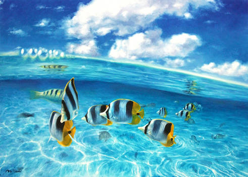 natural aquarium