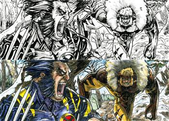 Wolverine vs Sabretooth by DKuang