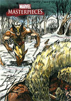 Wolverine Vs Sabretooth MM3 by DKuang