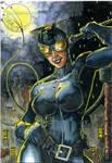 Catwoman ATC Colors