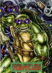 Donatello TMNT by IDW