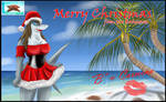 Merry Christmas from the Bahamas!