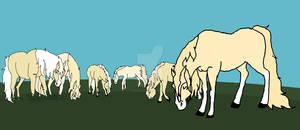 The Trancy Herd