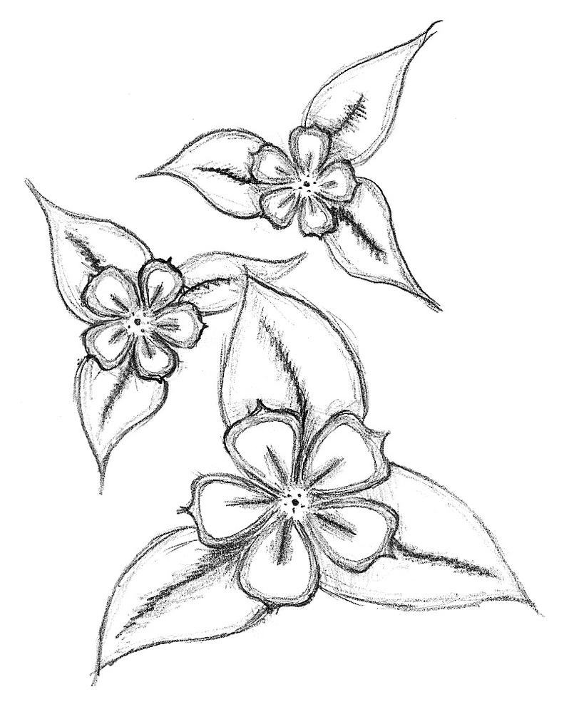 Flower Plant Line Drawing : Simple flowers by balloon fiasco on deviantart
