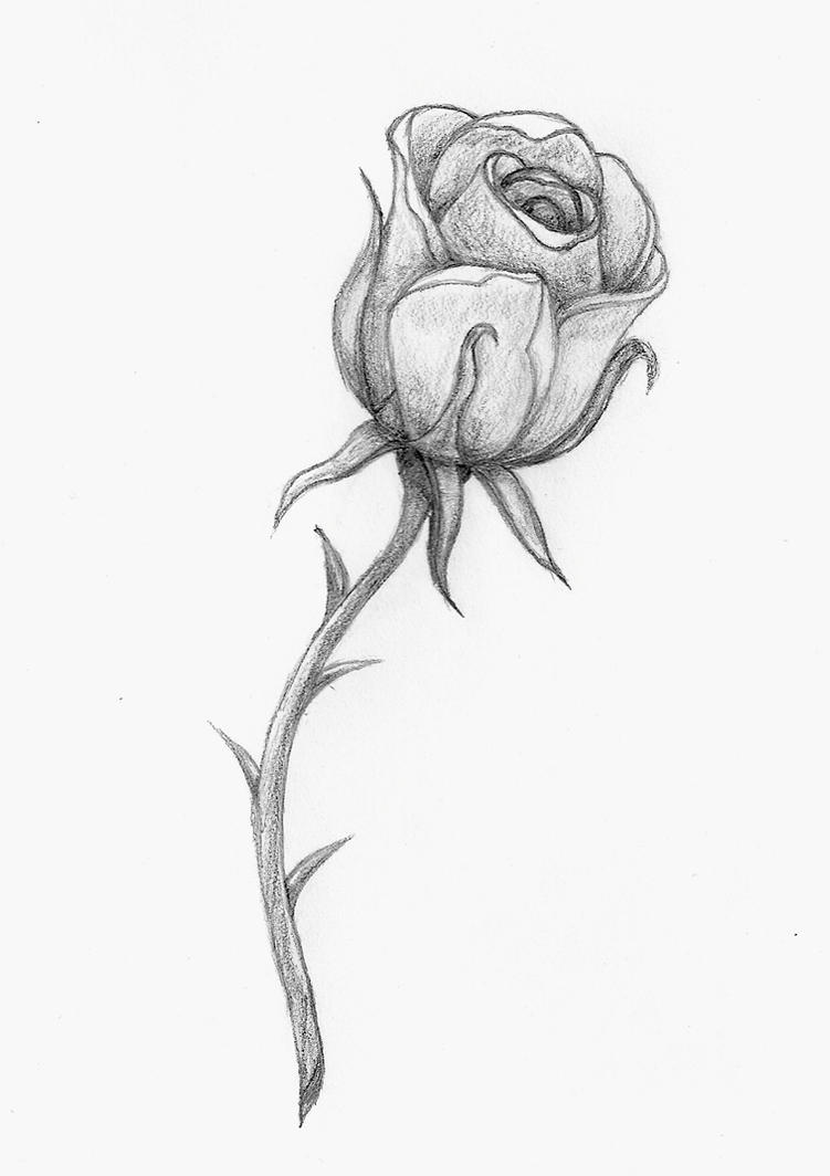 A rose by any other name by balloon fiasco on deviantart for Rose with stem tattoo designs