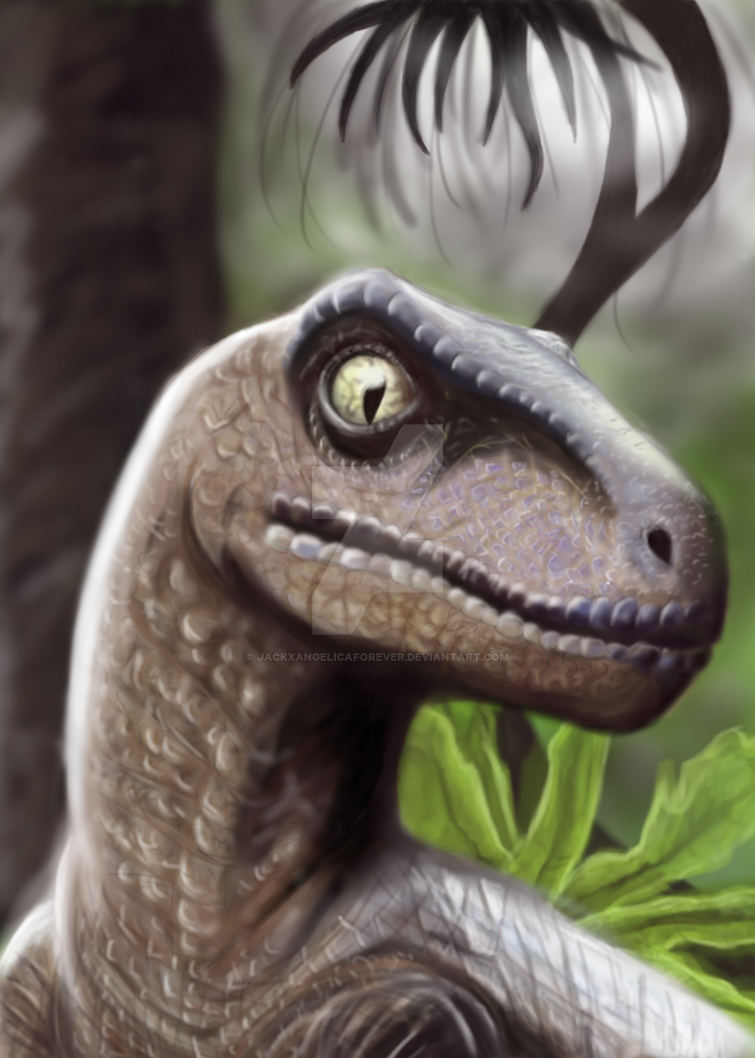 Velociraptor by JackXAngelicaforever