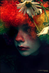 Clown Evenings by mirrorTEA