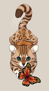 cat catch butterfly 20210121 2