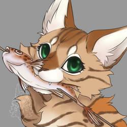 cat eat fish 20210218