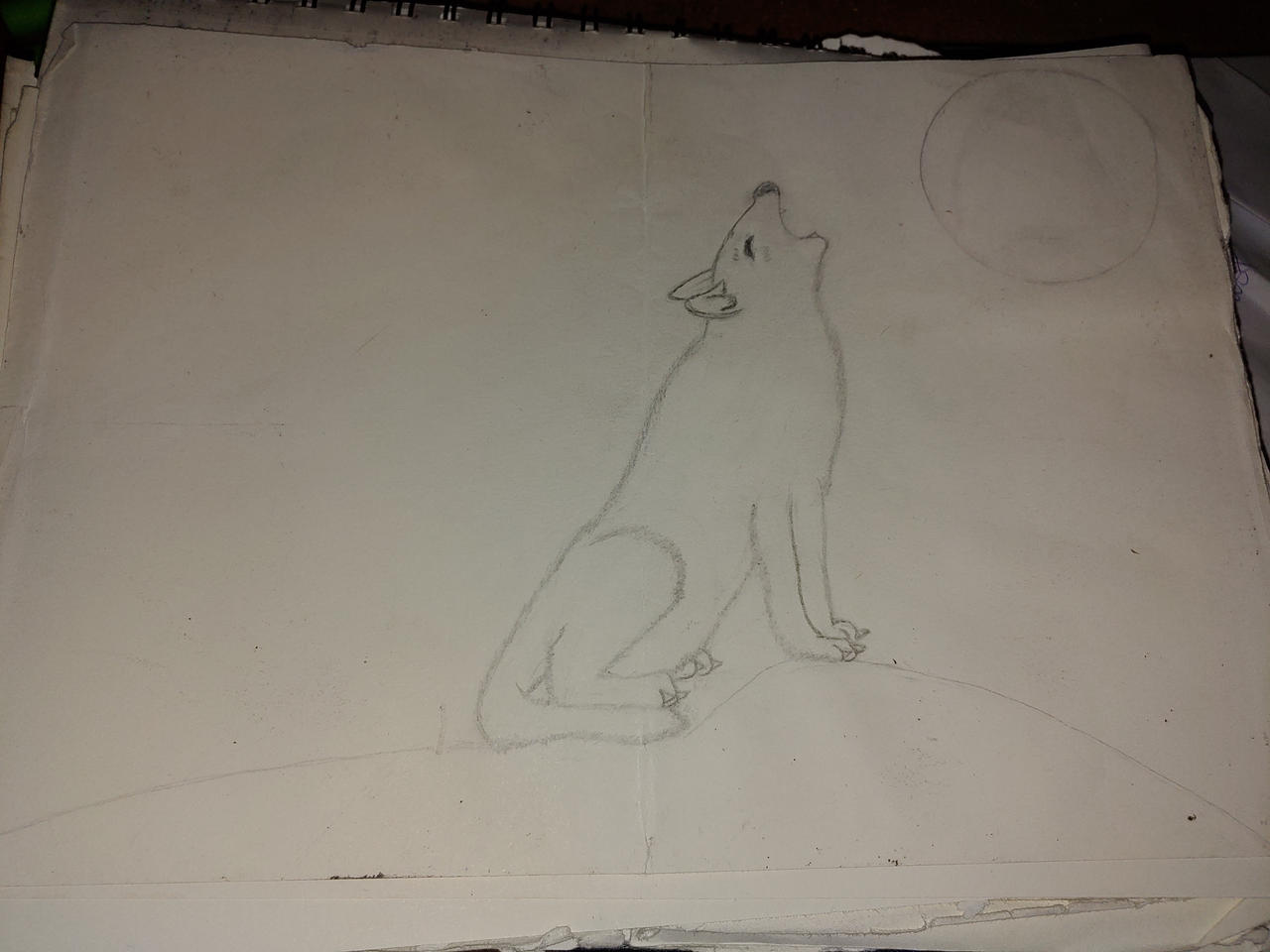 1st wolf picture i made