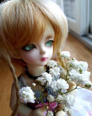 Wren's Little Flowers by Kelaria-Daye