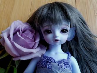 Aria's Rose by Kelaria-Daye