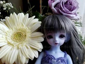 Little Girl, Big Daisy by Kelaria-Daye