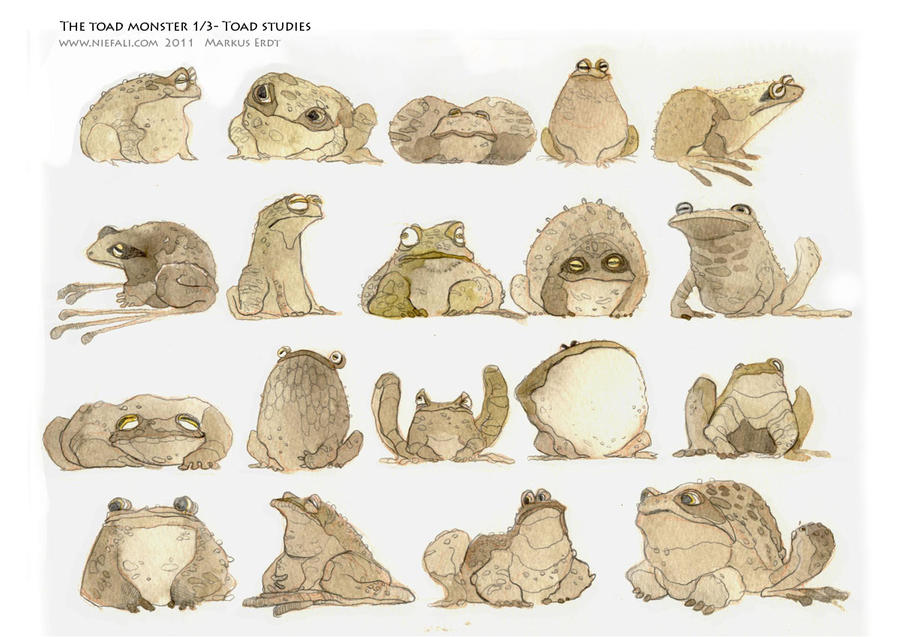 The toad monster 1 of 3 by Vaejoun