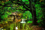 Images of the forest (4) Watermill