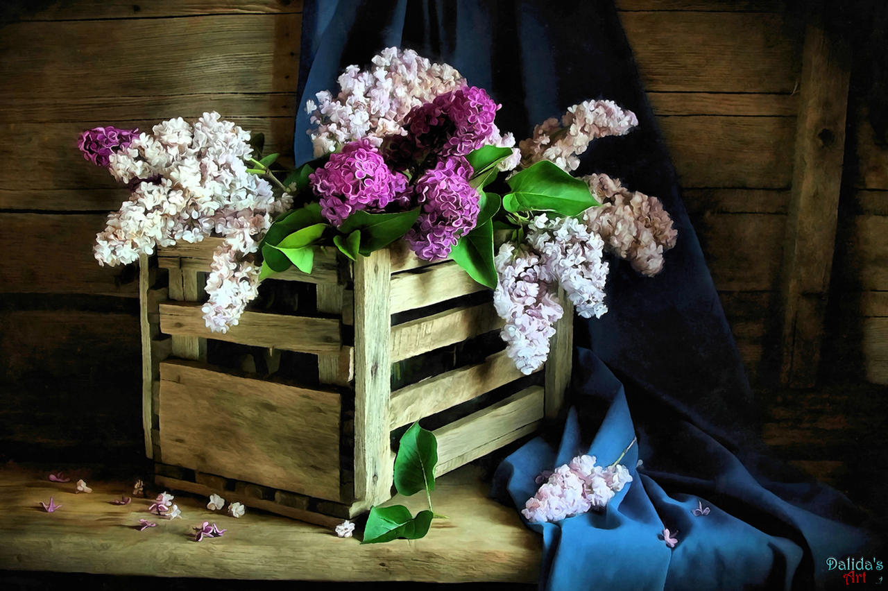 Still life (7) Crates with Flowers