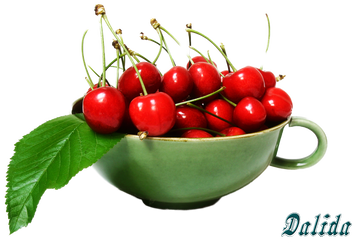 Cherries by Dalidas-Art