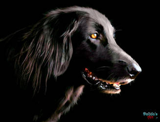 Guard Dog by makiskan