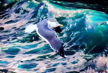 Gull In Wave
