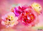 Roses And Ladybugs