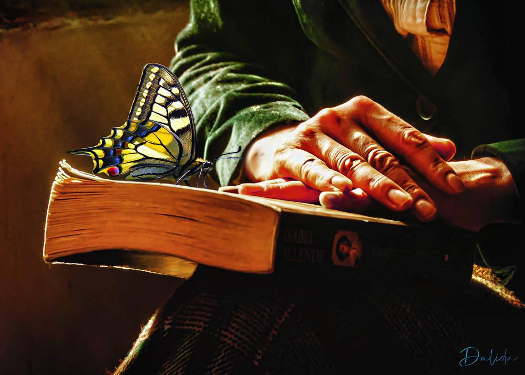 Hands by Dalidas-Art
