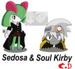 Sedosa and Soul Kirby