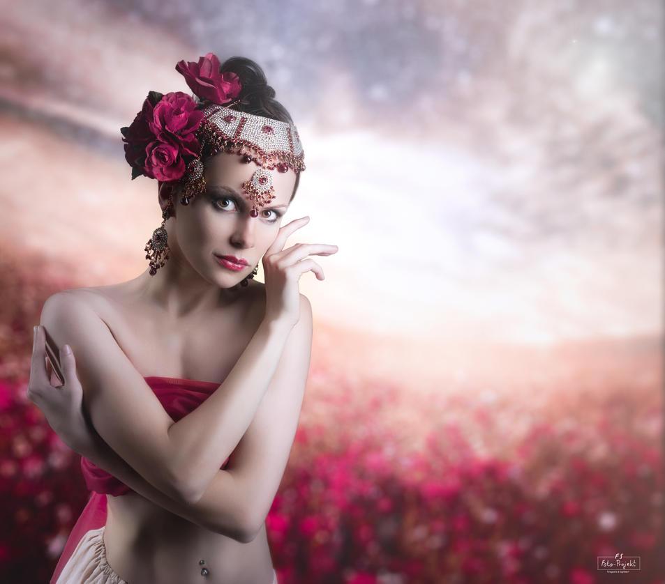 Rose garden by Emerald2010