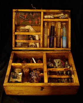 witch Briefcase N1
