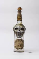 Skull bottle by FraterOrion