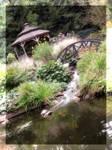 Thy Garden Of Waterfalls