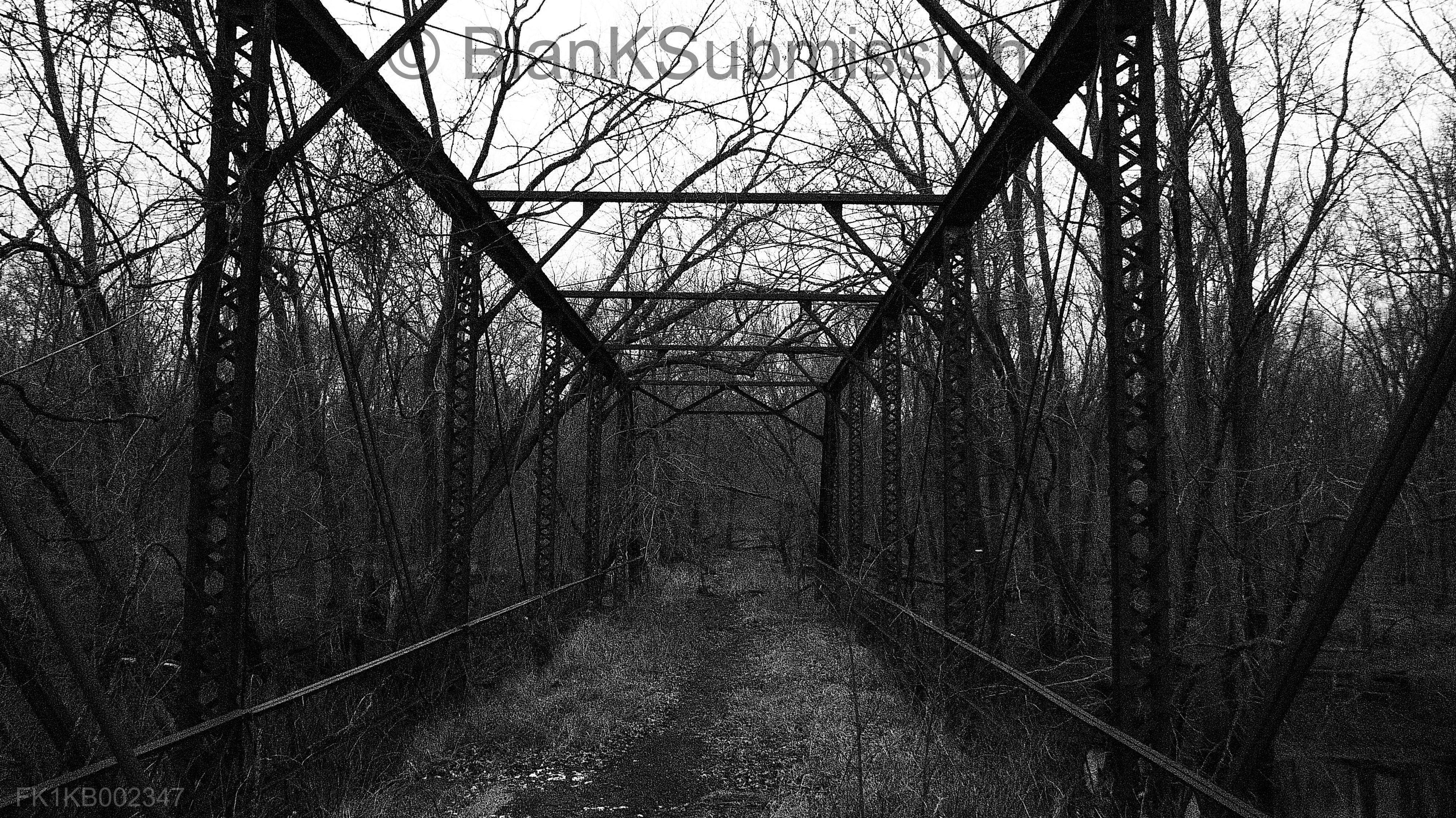 Dog Face Bridge by BlanKSubmission