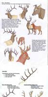 Elk Tutorial