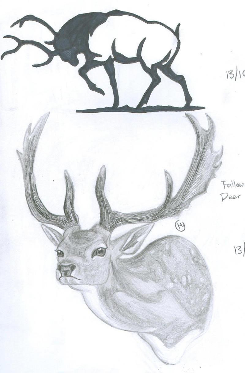 deer drawings - photo #43