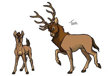 Character Sheet: Tain