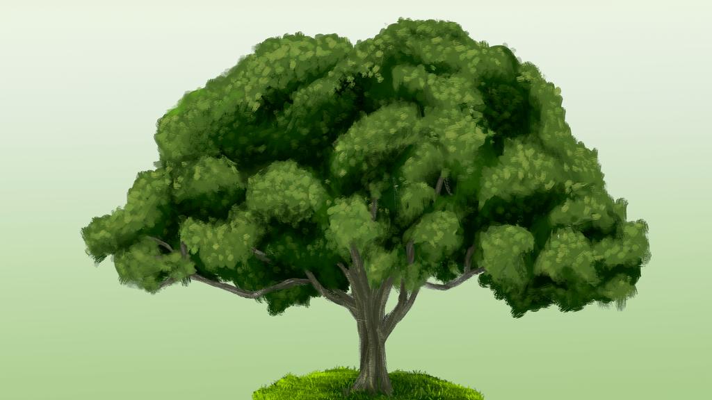 tree sketch by Absalem