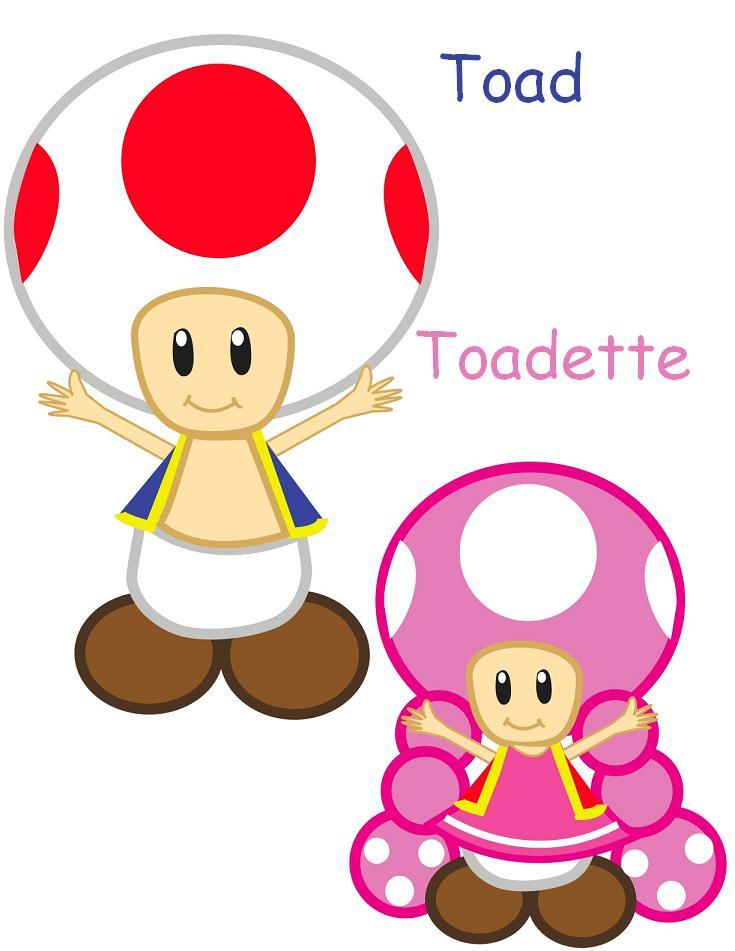 video mario kart double dash toad e toadette - DriverLayer ... - photo#19