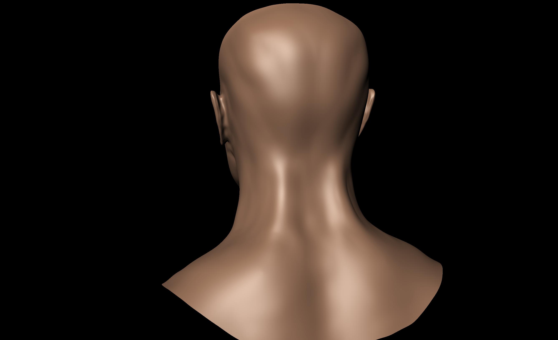 http://fc08.deviantart.net/fs70/f/2011/030/9/c/human_head_back_view_by_undeadstawa-d38e24r.png