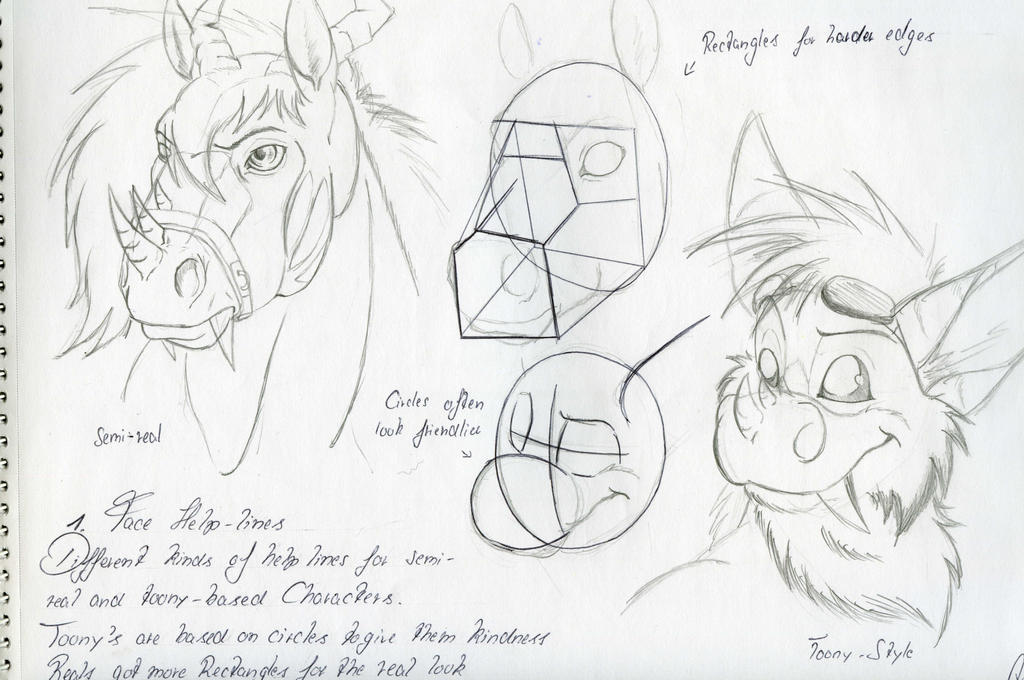 Sketch Study - Face help lines by Giichie-Takeshi
