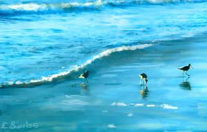 3 birds on the Beach by paintgirl