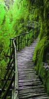 Wood green