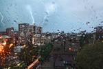 rain dogs by BorisMrdja