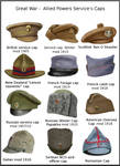 ww1 - Allied Power Service's caps