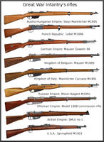 ww1  infantry rifles by AndreaSilva60