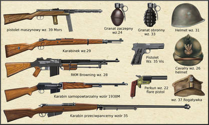 ww2 Polish  Army weapons